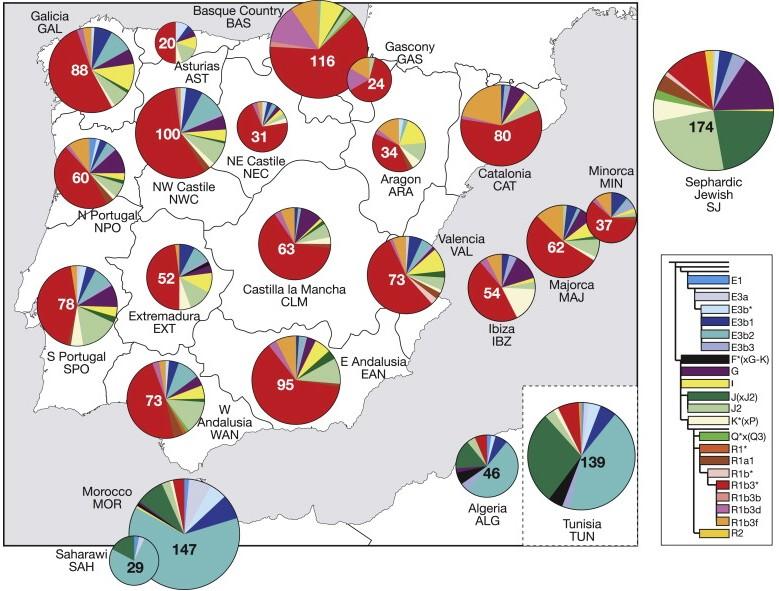 Mapa genético español.